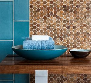 wz-anteak-penny-round-wall-tile-install